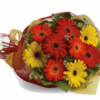 gerbera-brights-BOUQUET